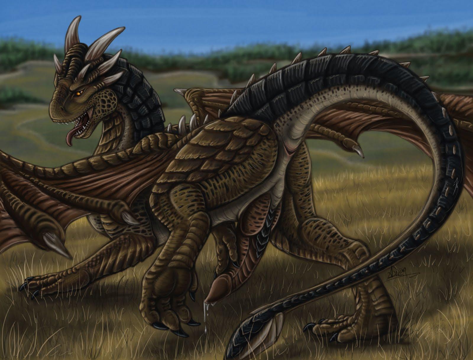 e621 dragon