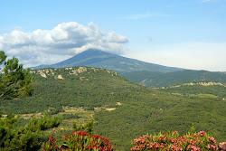 Majestic Mont Ventoux