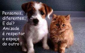 A amizade