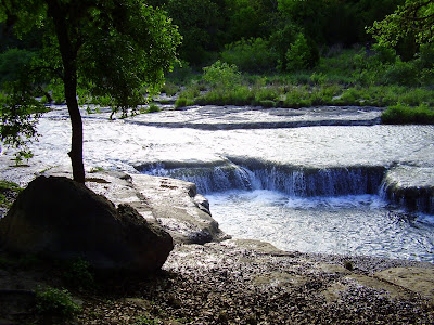 Bull Creek was endangered