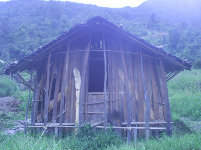 OUR TRADITIONAL HOUSE