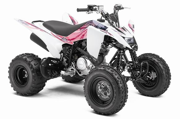 2011 atv yamaha raptor 125 garage car. Black Bedroom Furniture Sets. Home Design Ideas