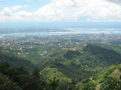 A View of Cebu City from Babag Uno