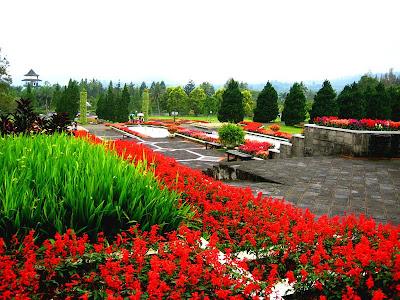 http://1.bp.blogspot.com/_3QNa0GpFku4/SELCmhRG-jI/AAAAAAAAAKQ/SB7a0hu32wc/s400/Taman+Bunga+Nusantara.jpg