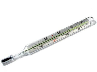 http://1.bp.blogspot.com/_3T7yPwialGk/SvNMy3jw0ZI/AAAAAAAAAC8/5h0aZhwNJGk/s400/il-termometro-a-mercurio-ha-i-giorni-contati.jpg