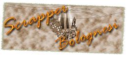 ScrapperBolognesi