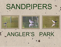 SANDPIPERS AT ANGLER'S PARK
