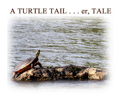 A TURTLE TAIL . . . er TALE