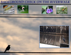 BACKGROUND CHECK ON THE RIVERWALK