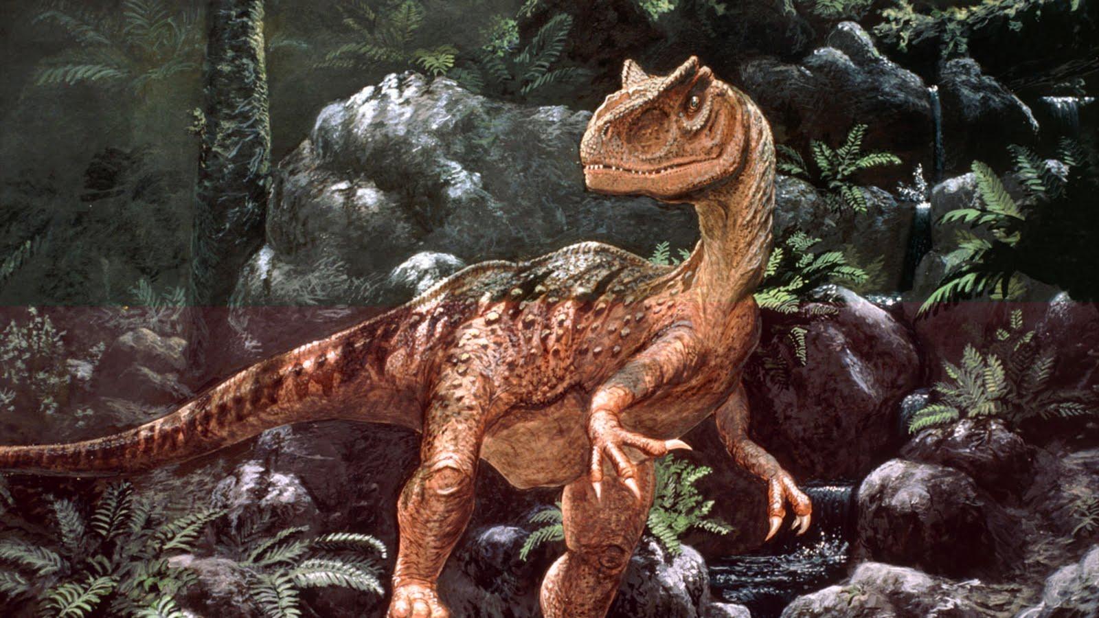 http://1.bp.blogspot.com/_3UZ_N8Qdang/TJNn5lidmWI/AAAAAAAADfw/UJvBp-accus/s1600/allosaurus-artwork-sc5818-xl.jpg