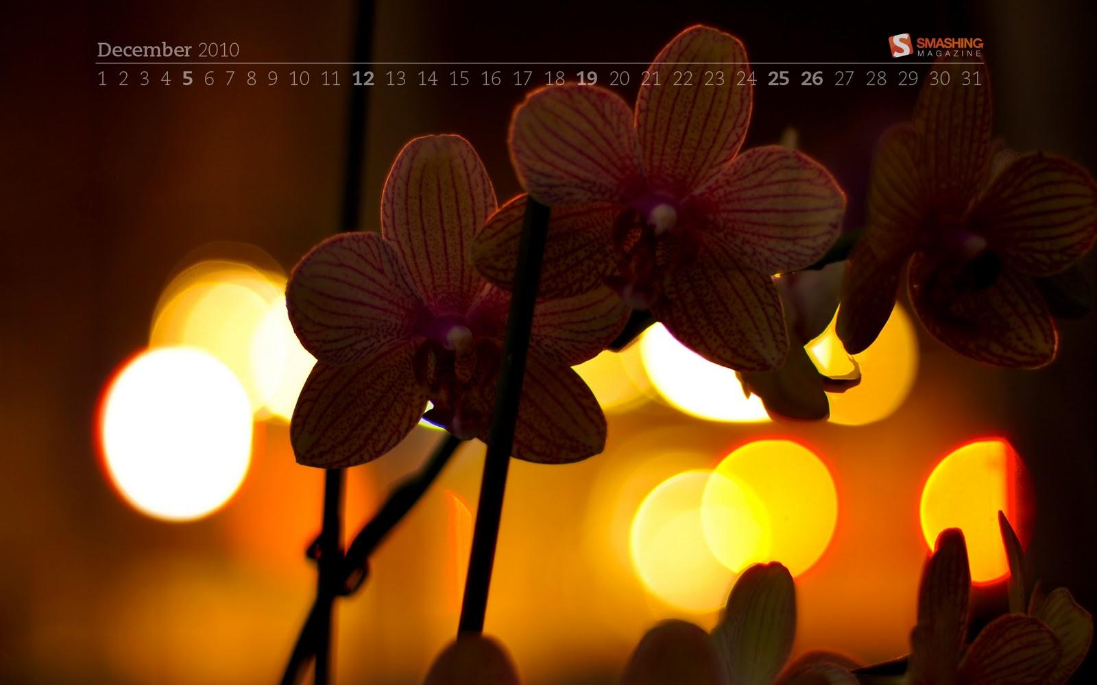 http://1.bp.blogspot.com/_3UZ_N8Qdang/TPcyn4Dm0aI/AAAAAAAAEjo/oQslUpL4i_I/s1600/december-10-flower_bokeh__57-calendar-1920x1200.jpg