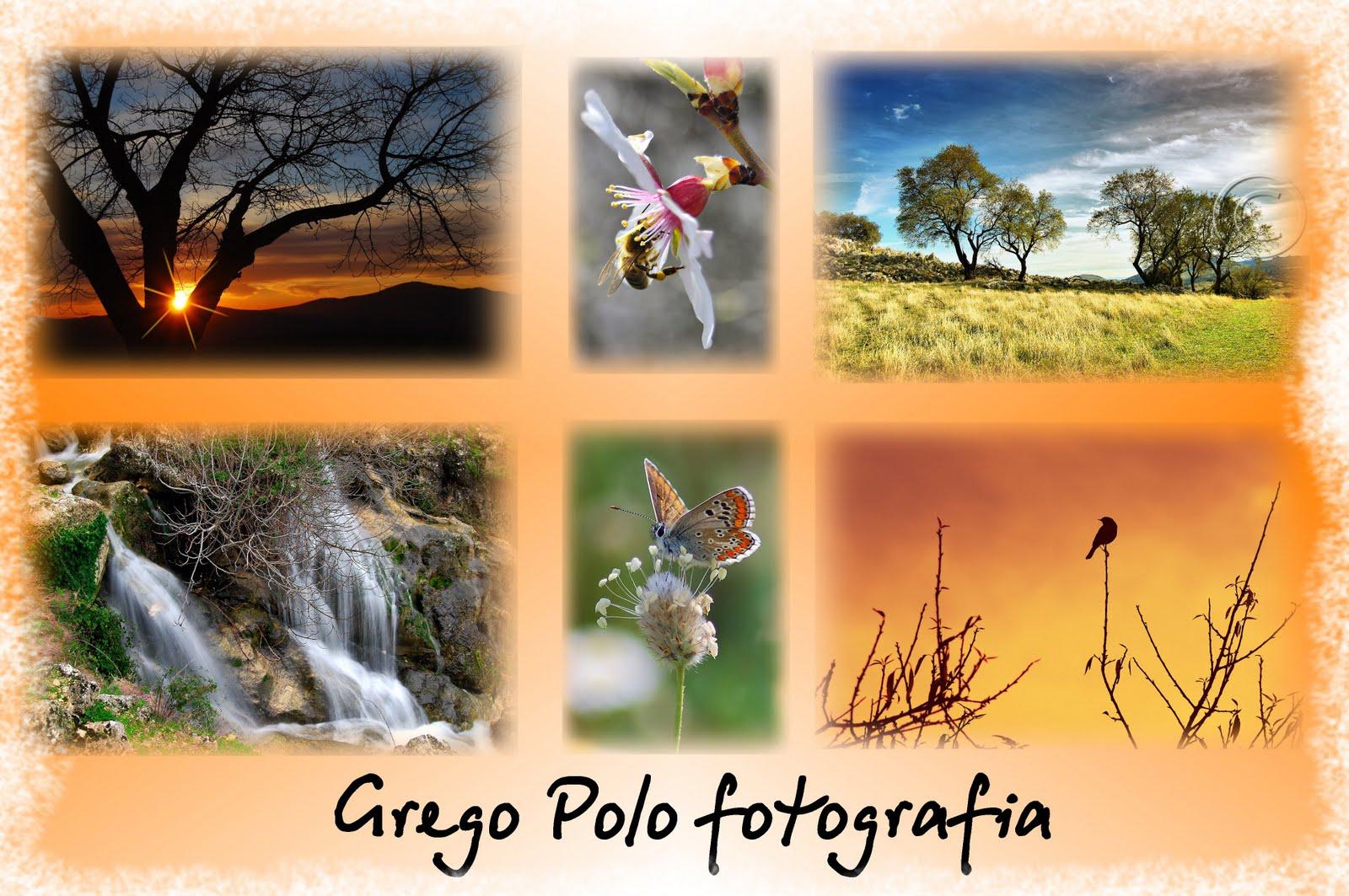 Grego Polo fotografías