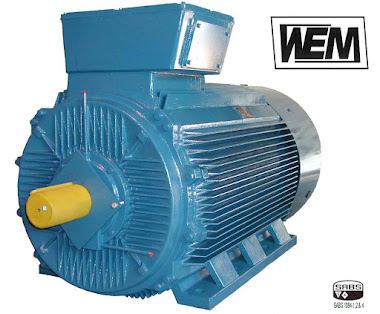 WEM Electric Motors High Efficiency