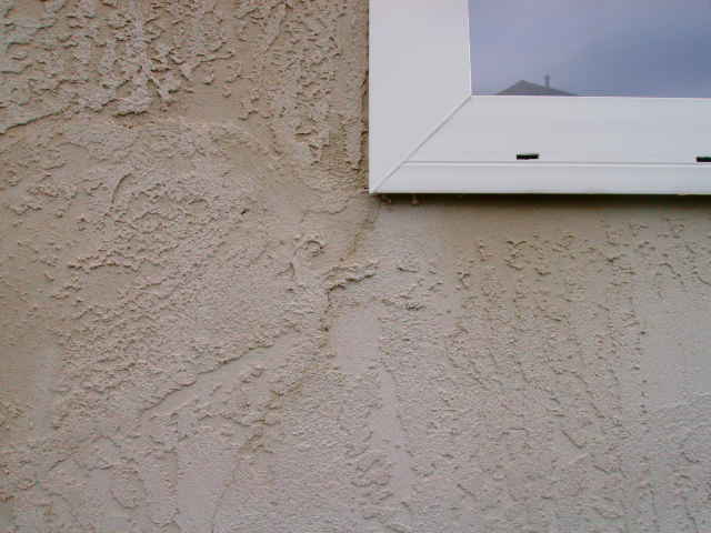the homebuyer 39 s advocate mold and stucco