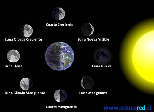 Sfj xuntos moitos las fases de la luna for Hoy es cuarto creciente