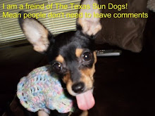 Support The Texas Sun Dogs
