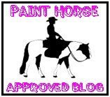 Paint Horse Award