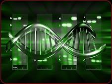 LA MARAVILLA DEL ADN