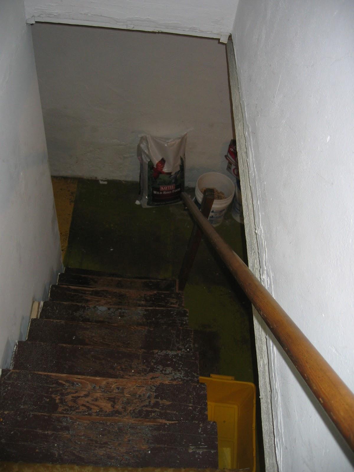 Creepy Basement Stairs Home Decor Xshareus