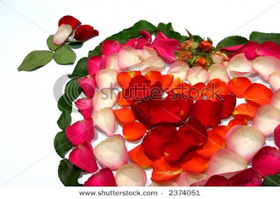 valentine heart shape rose petal greetings