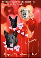 Animals Valentine's Day Cards