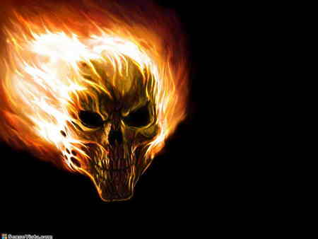 free vector skull wallpaper flaming skull wallpaper - Halloween Skulls