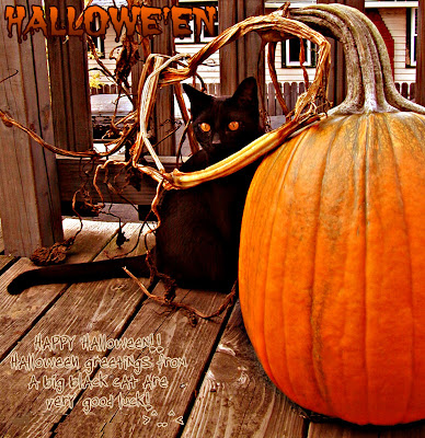 Happy Halloween Pumpkin Greetings