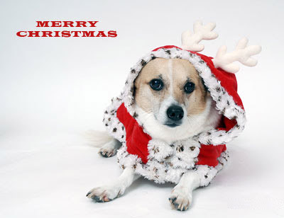 Online Christmas Greeting Card