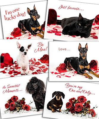 Dog Valentine Cards