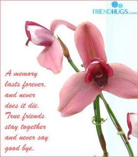 [friendship_card1.jpg]