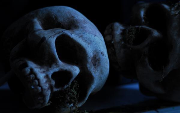 Scary Halloween Skulls