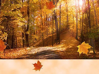 Autumn Thanksgiving Cards