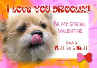 Dog Photo Valentine eCards