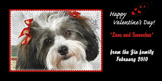 Dog Valentine Cards
