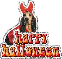 and exchange warming halloween dog cards for free explore our awesome gallery of free ecards and greetings available in the form of small thumbnails - Free Animated Halloween Cards