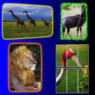 دمج الصور Download Collage Maker 3.6 Full Free