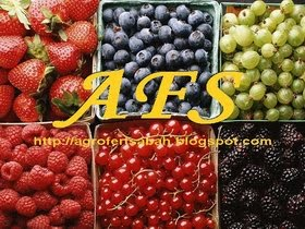 Blog Agro Fert Sabah: