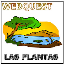 EQUILIBRIO PLANTA Y NATURALEZA