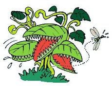 ¿PLANTAS CARNIVORAS?