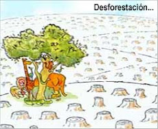 LA DEFORESTACION