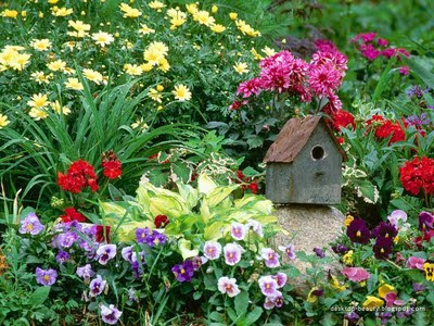 Flowers Gardens