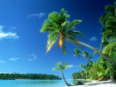 beach wallpaper for desktop. tropical each wallpaper hd.