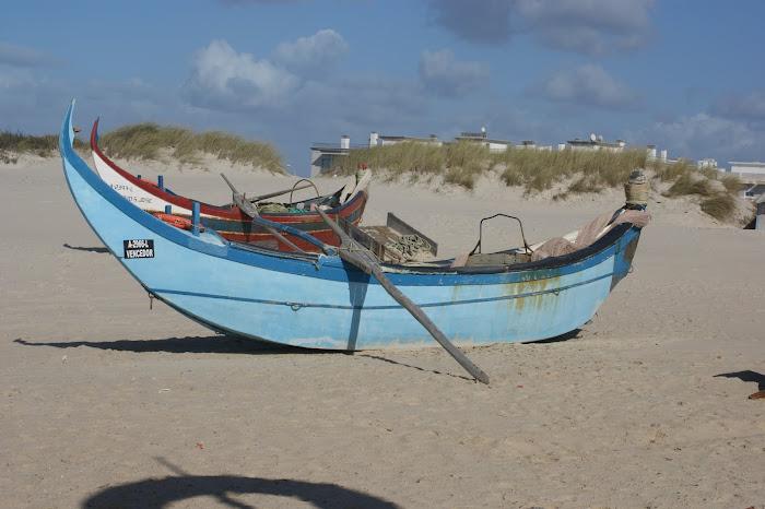 praia da barra   vagos