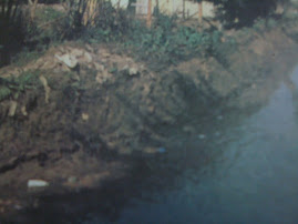aguas poluidas