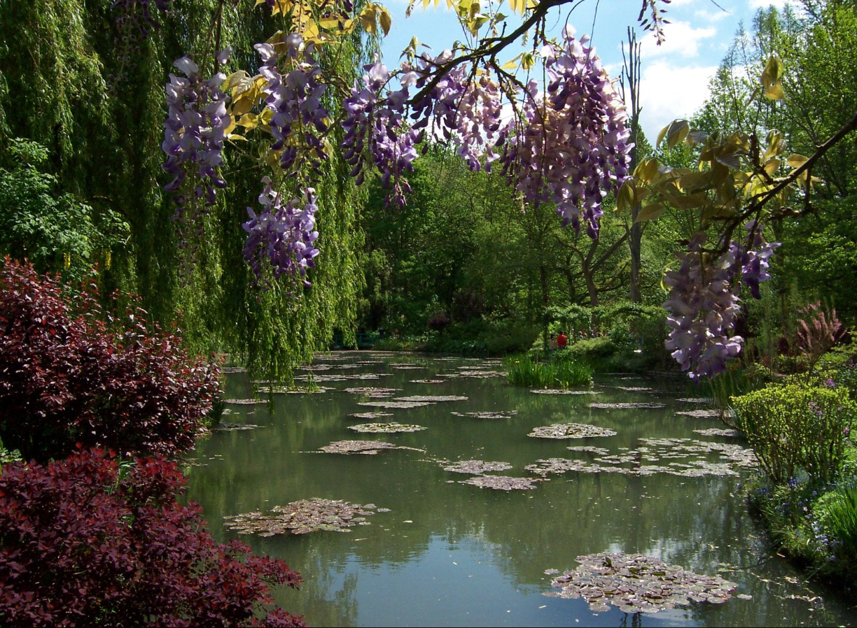 Ile de france walks wednesday 11 august at monet 39 s giverny for Monet s garden france