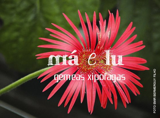 Má & Lu