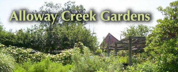 Alloway Creek Gardens