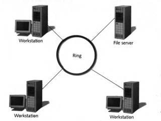 Tentang Topologi Token Ring