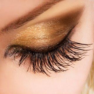 http://1.bp.blogspot.com/_3l3gvb5LLqk/SW0xwOxZM8I/AAAAAAAAALM/ZYG3lXtj0W4/s400/eyelash.jpg
