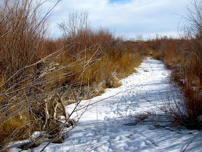 Badwater Creek, Bonneville, Wyoming